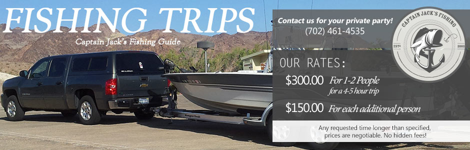 Lake Mead Fishing Guides